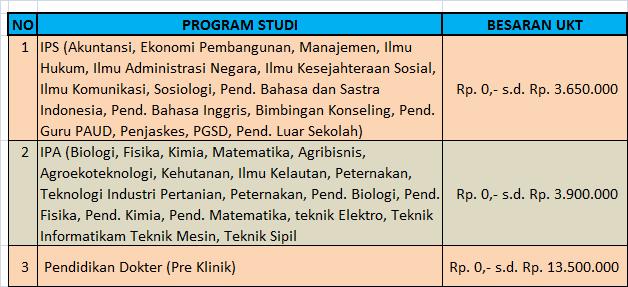 Besaran UKT Program Sarjana Universitas Bengkulu  Biaya Kuliah Universitas Bengkulu – UNIB